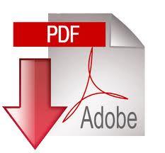 download stunt resume PDF